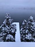 Sneeuw behandeld dok stock afbeeldingen