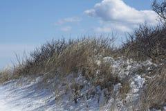 Sneeuw behandeld duin Stock Foto