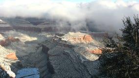 Sneeuw Behandeld Grand Canyon stock video