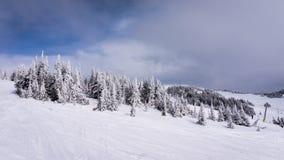 Sneeuw Behandeld Haarlok in Hoog Alpien Ski Area van Zonpieken Stock Foto's