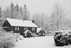 Sneeuw behandeld huis in bos Stock Foto