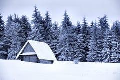 Sneeuw behandeld plattelandshuisje Royalty-vrije Stock Foto