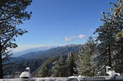 Sneeuw Behandeld San Bernardino Mountain stock afbeelding