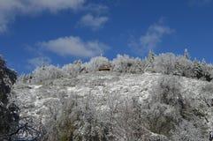 Sneeuw Behandeld San Bernardino Mountain royalty-vrije stock foto