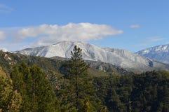 Sneeuw Behandeld San Bernardino Mountain royalty-vrije stock afbeeldingen