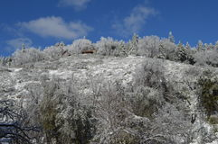 Sneeuw Behandeld San Bernardino Mountain royalty-vrije stock afbeelding