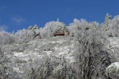 Sneeuw Behandeld San Bernardino Mountain Forest Lodge royalty-vrije stock afbeeldingen