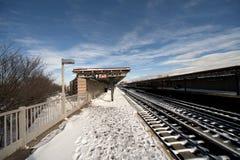 Sneeuw behandeld Station NYC Royalty-vrije Stock Foto's