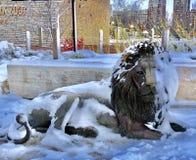 Sneeuw Behandelde Adelor stock fotografie