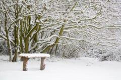 Sneeuw behandelde bank Royalty-vrije Stock Afbeeldingen