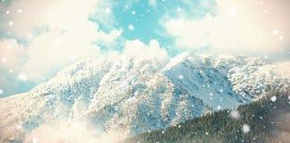 Sneeuw behandelde berg in bos 3d Stock Afbeelding