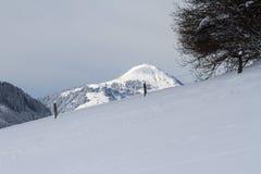 Sneeuw behandelde bergbovenkant in Tirol Stock Afbeeldingen