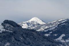 Sneeuw behandelde bergbovenkant in Tirol Stock Afbeelding