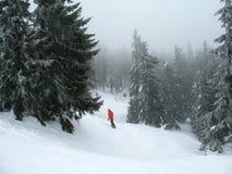Sneeuw behandelde bergheuvels  De winter bosachtergrond royalty-vrije stock afbeeldingen