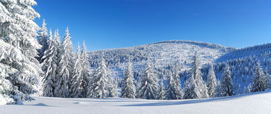 Sneeuw behandelde bergpieken Stock Fotografie
