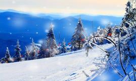 Sneeuw behandelde bomen in de bergen Royalty-vrije Stock Afbeeldingen