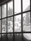 Sneeuw behandelde bomen door venster Stock Afbeeldingen