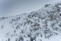 Sneeuw behandelde bomen en rotsgezichten op bergbovenkant Stock Foto's