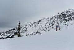 Sneeuw behandelde bomen op bergbovenkant Royalty-vrije Stock Foto's