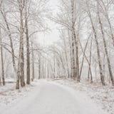 Sneeuw Behandelde de Winterweg Royalty-vrije Stock Afbeeldingen