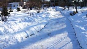 Sneeuw behandelde gang van park stock video