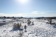 Sneeuw behandelde grond Stock Afbeeldingen