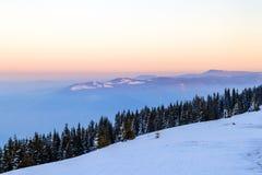 Sneeuw behandelde heuvels en pijnboombomen in de winterbergen Noordpoolla Stock Foto