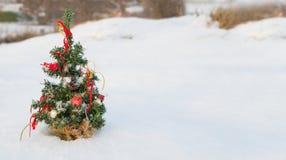 Sneeuw behandelde Kerstboom Stock Foto's