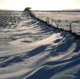 Sneeuw behandelde landscape.JH Royalty-vrije Stock Foto