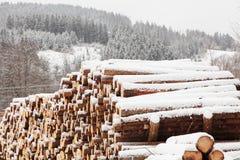 Sneeuw behandelde logboeken Royalty-vrije Stock Foto's