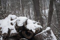 Sneeuw behandelde logboekstapel in de winter stock afbeelding