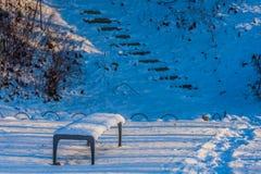 Sneeuw behandelde parkbank in een openbaar park Royalty-vrije Stock Fotografie