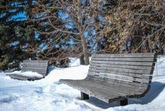 Sneeuw Behandelde Parkbanken Stock Foto's