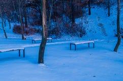 Sneeuw behandelde parkbanken in een openbaar park Royalty-vrije Stock Afbeelding