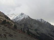 Sneeuw behandelde pieken stock foto's