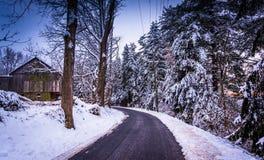 Sneeuw behandelde pijnboombomen en schuur langs een landweg in landelijk C Stock Foto