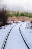 Sneeuw behandelde spoorwegsporen royalty-vrije stock fotografie