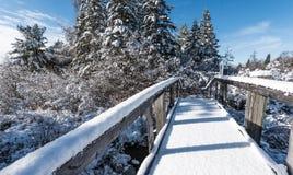 Sneeuw behandelde voetgangersbrug in de winterhout Verse gevallen sneeuw stock foto