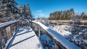 Sneeuw behandelde voetgangersbrug in de winterhout Verse gevallen sneeuw royalty-vrije stock fotografie