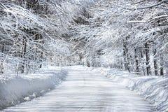 Sneeuw behandelde weg Stock Afbeelding