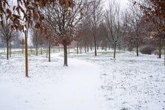 Sneeuw Behandelde Windende Weg in een Openbaar Park royalty-vrije stock afbeelding
