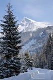 Sneeuw berg royalty-vrije stock fotografie