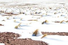 Sneeuw in Berg Stock Afbeelding