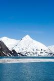 Sneeuw bergen in Alaska royalty-vrije stock foto
