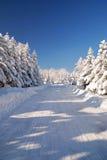 Sneeuw bergweg Stock Fotografie