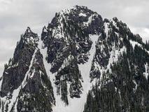 Sneeuw bij Onderstel Rainier National Park In Winter stock afbeelding