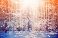 Sneeuw bosachtergrond royalty-vrije illustratie
