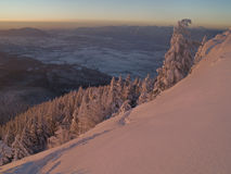 Sneeuw bosrand Royalty-vrije Stock Afbeelding