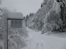 Sneeuw bosweg royalty-vrije stock foto's