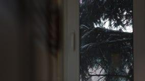 Sneeuw buiten Venster stock footage